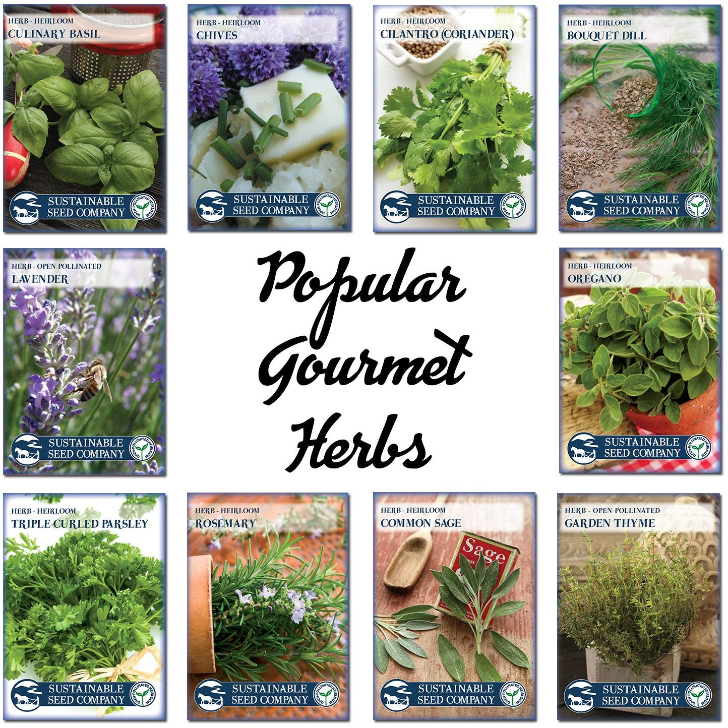 Herb Garden Kit Herb Planter Comes Complete With A 10 Variety Non