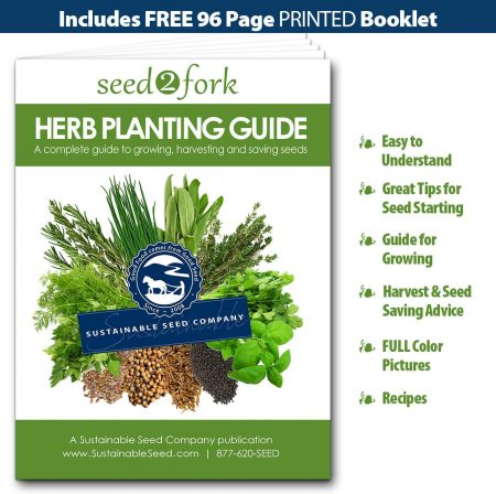 Herb Garden Kit, Herb Planter Comes Complete with a 10 Variety Non GMO Heirloom Herb Seed Collection